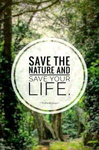ways to save nature