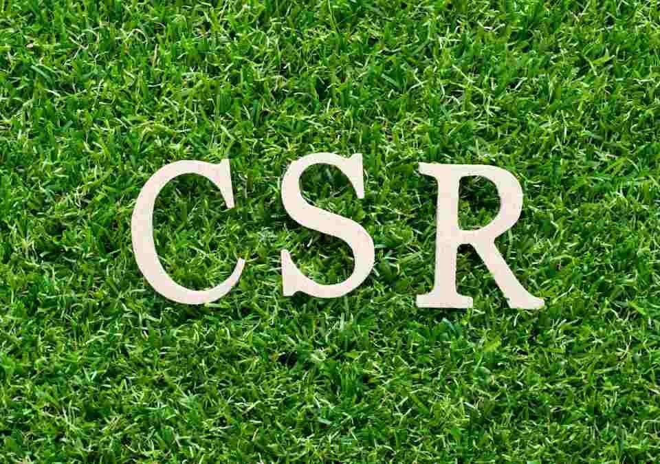 Sustainability Agenda for CSR